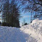 Zahrada si zaslouží péči i v zimě