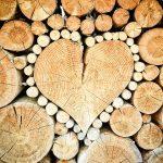 Mýty a fakta o dřevostavbách: Také jim věříte?