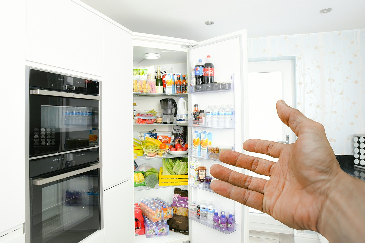 Hospitality Fridge Hand Door  - mohamed_hassan / Pixabay